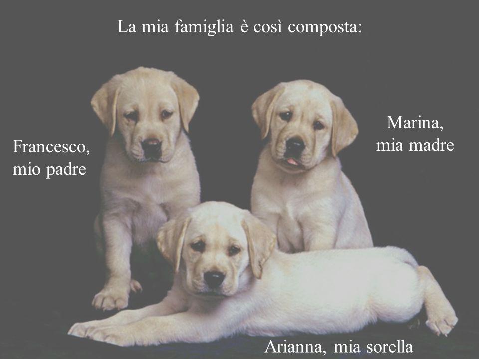 La mia famiglia è così composta: Marina, mia madre Francesco, mio padre Arianna, mia sorella