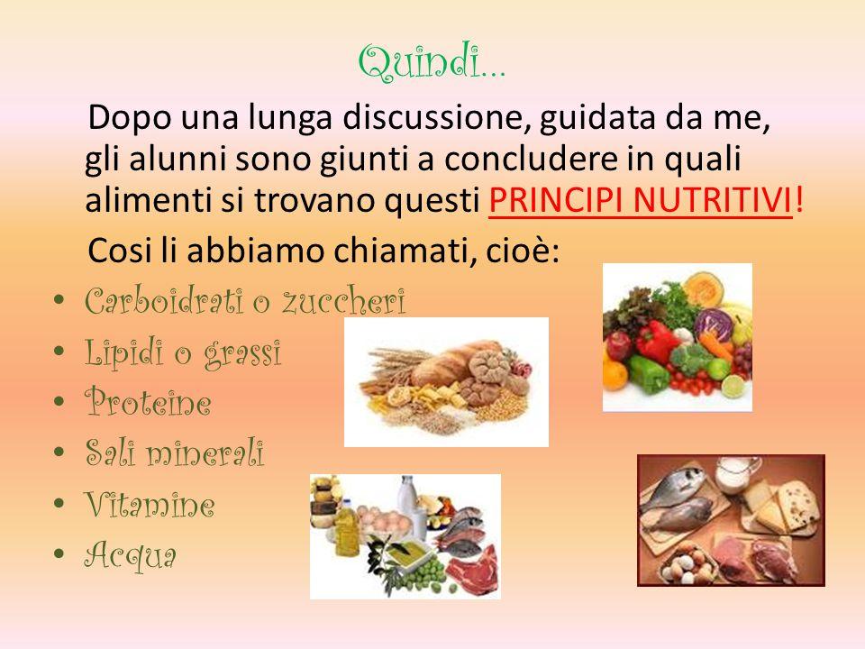 Quindi… Dopo una lunga discussione, guidata da me, gli alunni sono giunti a concludere in quali alimenti si trovano questi PRINCIPI NUTRITIVI.