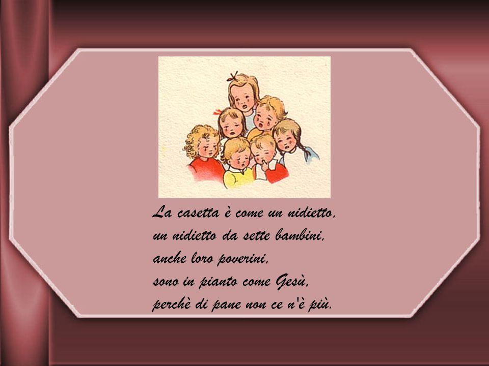 La casetta è come un nidietto, un nidietto da sette bambini, anche loro poverini, sono in pianto come Gesù, perchè di pane non ce n è più.