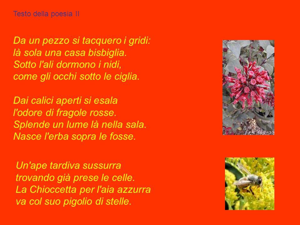 Il gelsomino notturno La poesia, la numero 36, fu scritta nel luglio del 1901 e pubblicata nella I edizione dell'opera Canti di Castelvecchio del 1903