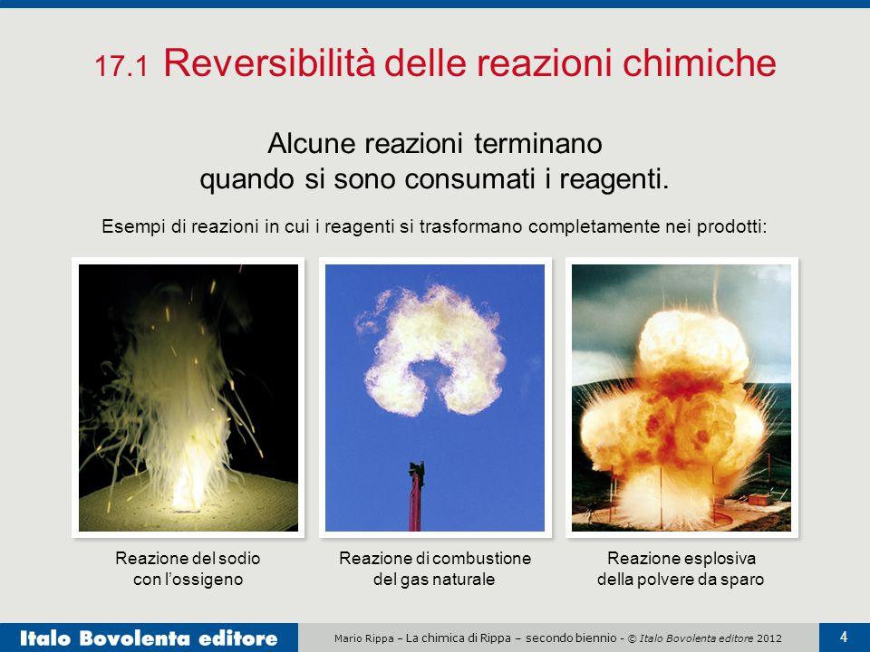 Mario Rippa – La chimica di Rippa – secondo biennio - © Italo Bovolenta editore 2012 4 17.1 Reversibilità delle reazioni chimiche Alcune reazioni terminano quando si sono consumati i reagenti.