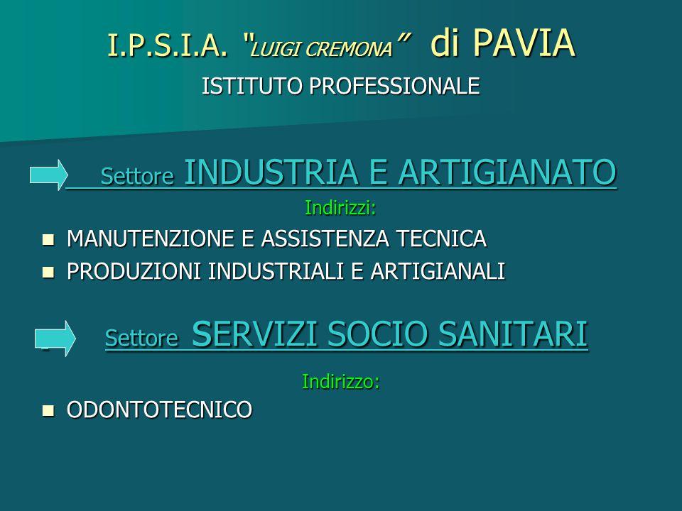ISTITUTO PROFESSIONALE Settore INDUSTRIA E ARTIGIANATO Settore INDUSTRIA E ARTIGIANATOIndirizzi: MANUTENZIONE E ASSISTENZA TECNICA MANUTENZIONE E ASSI