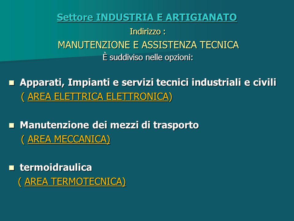 Settore INDUSTRIA E ARTIGIANATO Indirizzo : MANUTENZIONE E ASSISTENZA TECNICA È suddiviso nelle opzioni: Apparati, Impianti e servizi tecnici industri