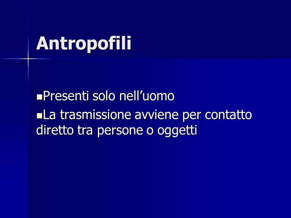 Antropofili Presenti solo nell'uomo Presenti solo nell'uomo La trasmissione avviene per contatto diretto tra persone o oggetti La trasmissione avviene