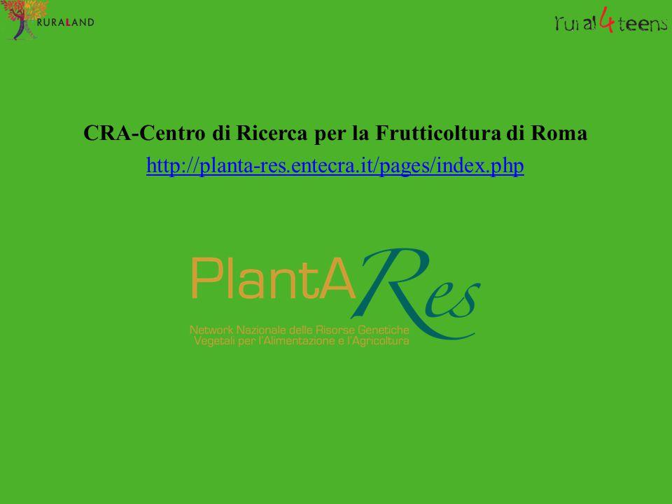 CRA-Centro di Ricerca per la Frutticoltura di Roma http://planta-res.entecra.it/pages/index.php