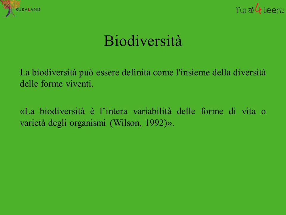 Biodiversità La biodiversità può essere definita come l'insieme della diversità delle forme viventi. «La biodiversità è l'intera variabilità delle for