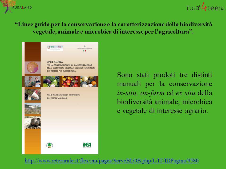 """""""Linee guida per la conservazione e la caratterizzazione della biodiversità vegetale, animale e microbica di interesse per l'agricoltura"""". Sono stati"""
