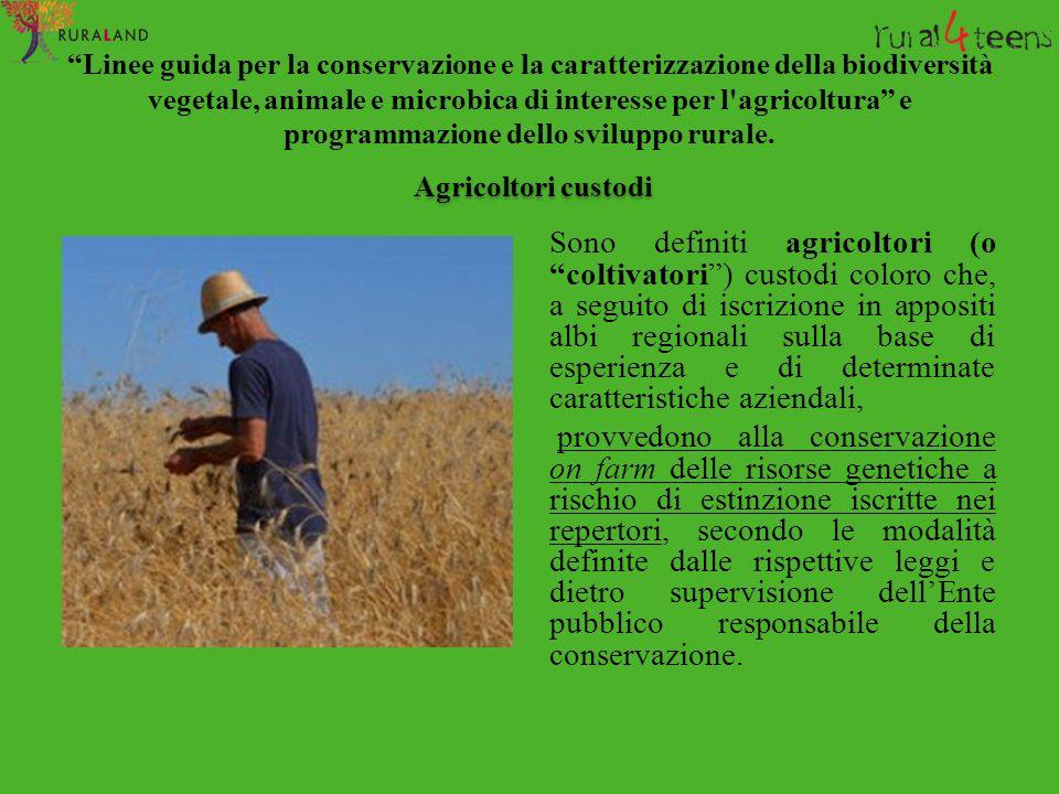"""""""Linee guida per la conservazione e la caratterizzazione della biodiversità vegetale, animale e microbica di interesse per l'agricoltura"""" e programmaz"""