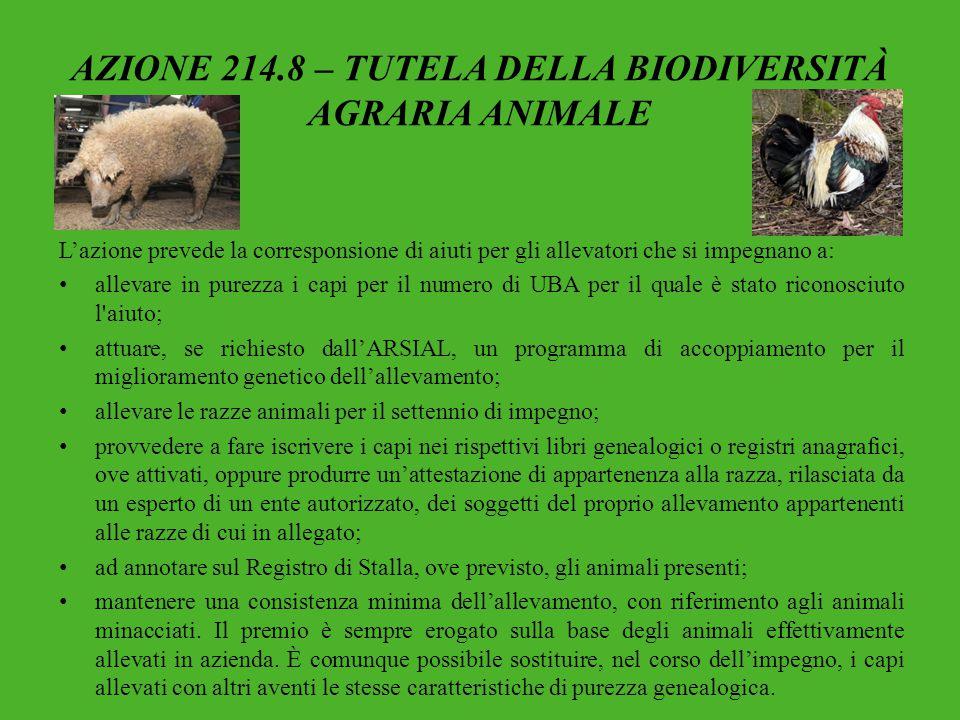 AZIONE 214.8 – TUTELA DELLA BIODIVERSITÀ AGRARIA ANIMALE L'azione prevede la corresponsione di aiuti per gli allevatori che si impegnano a: allevare i