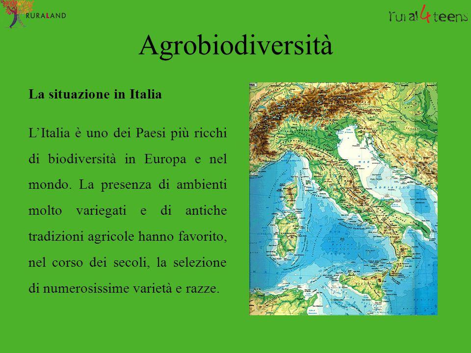 Agrobiodiversità La situazione in Italia L'Italia è uno dei Paesi più ricchi di biodiversità in Europa e nel mondo. La presenza di ambienti molto vari