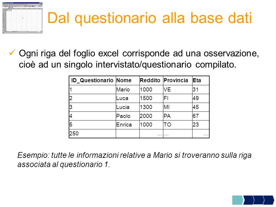 Ogni riga del foglio excel corrisponde ad una osservazione, cioè ad un singolo intervistato/questionario compilato.