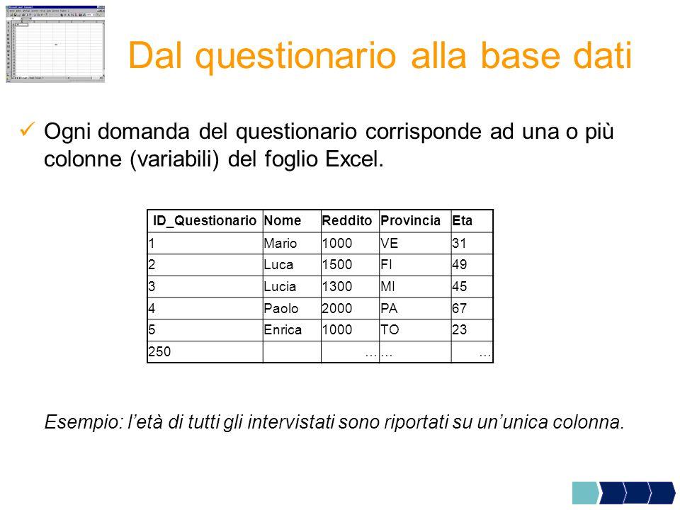 Ogni domanda del questionario corrisponde ad una o più colonne (variabili) del foglio Excel.