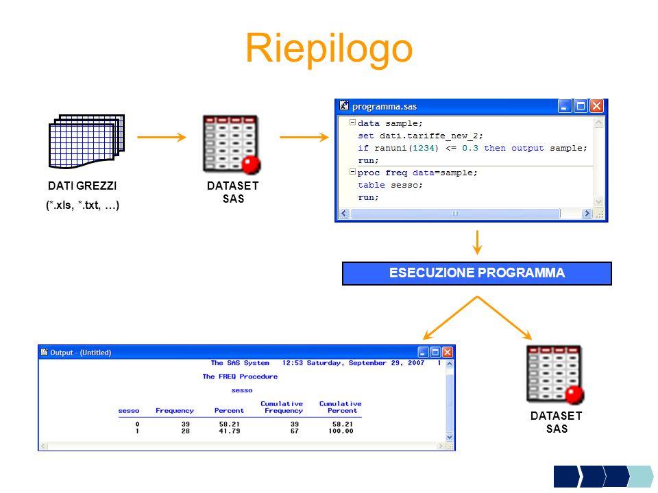 Riepilogo DATI GREZZI (*.xls, *.txt, …) DATASET SAS ESECUZIONE PROGRAMMA DATASET SAS