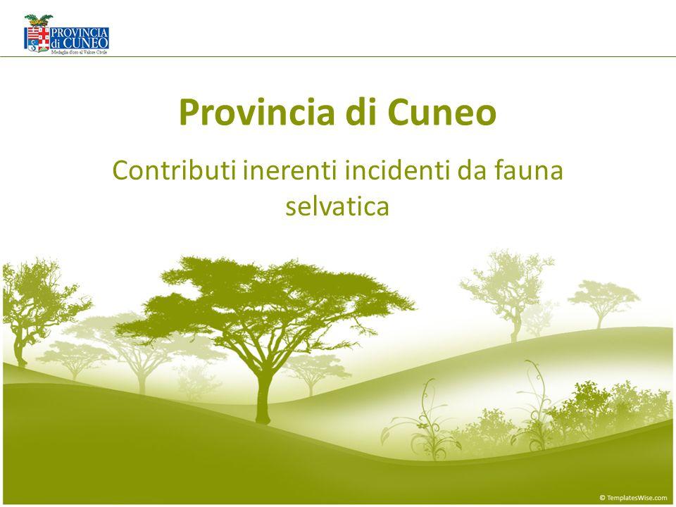 Provincia di Cuneo Contributi inerenti incidenti da fauna selvatica