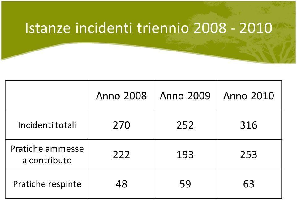 Istanze incidenti triennio 2008 - 2010 Anno 2008Anno 2009Anno 2010 Incidenti totali 270252316 Pratiche ammesse a contributo 222193253 Pratiche respinte 485963