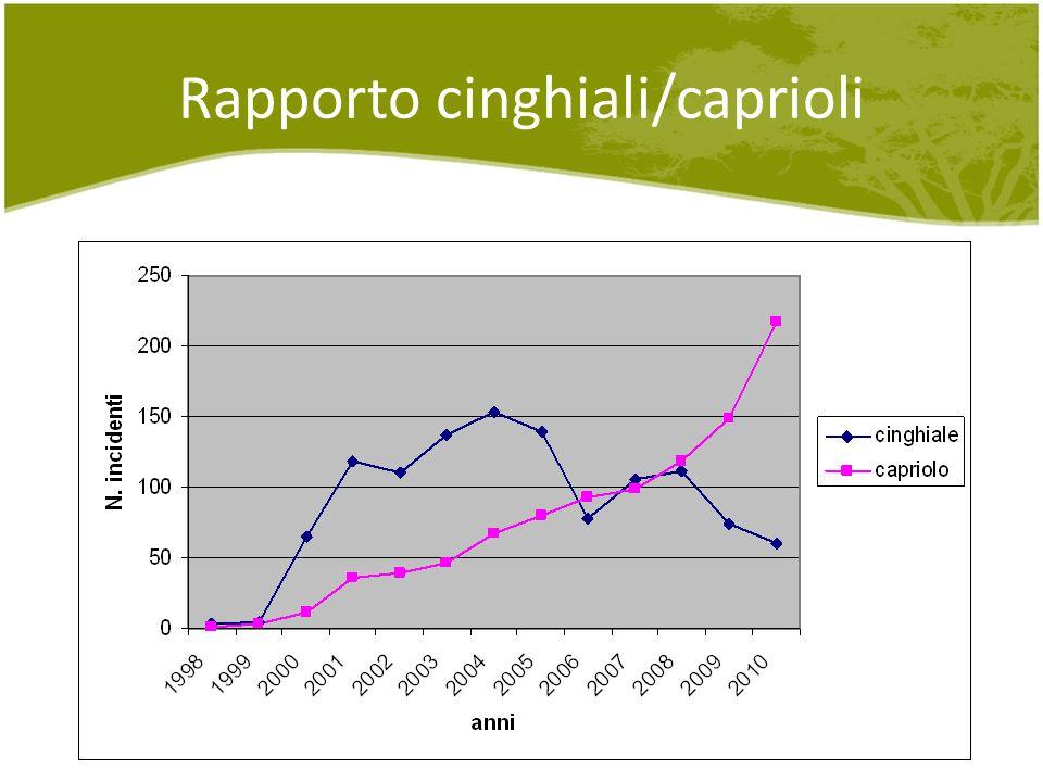 Rapporto cinghiali/caprioli