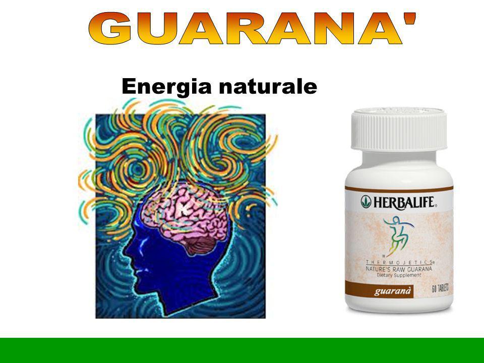 «CELULA è FELICE » Cell-Active è un integratore alimentare che fornisce Vitamine B1, B2, B6, rame, zinco, manganese e principi vegetali, utili per colmare le carenze alimentari o gli aumentati fabbisogni organici di questi nutrienti.