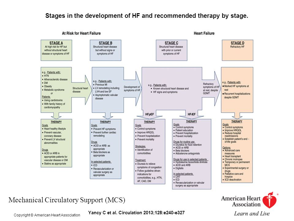 Stages in the development of HF and recommended therapy by stage. Yancy C et al. Circulation 2013;128:e240-e327 Copyright © American Heart Association