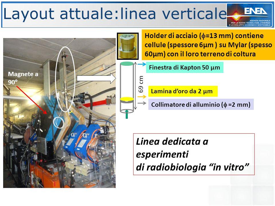 """Layout attuale:linea verticale Linea dedicata a esperimenti di radiobiologia """"in vitro"""" Holder di acciaio (  =13 mm) contiene cellule (spessore 6µm )"""