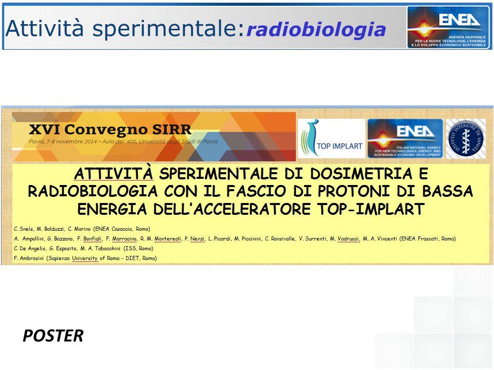 Attività sperimentale: radiobiologia POSTER