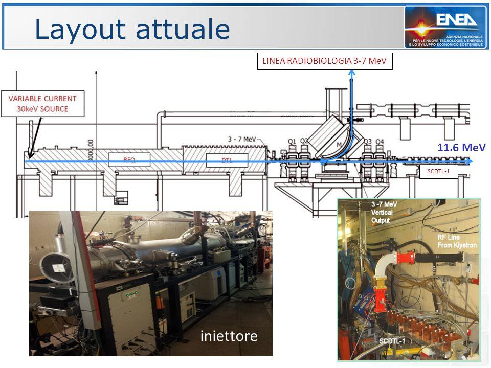 Layout attuale LINEA RADIOBIOLOGIA 3-7 MeV 11.6 MeV SCDTL-1 iniettore