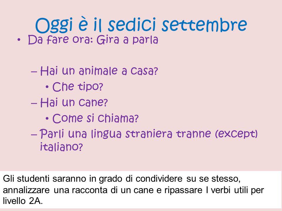 Oggi è il sedici settembre Da fare ora: Gira a parla – Hai un animale a casa? Che tipo? – Hai un cane? Come si chiama? – Parli una lingua straniera tr