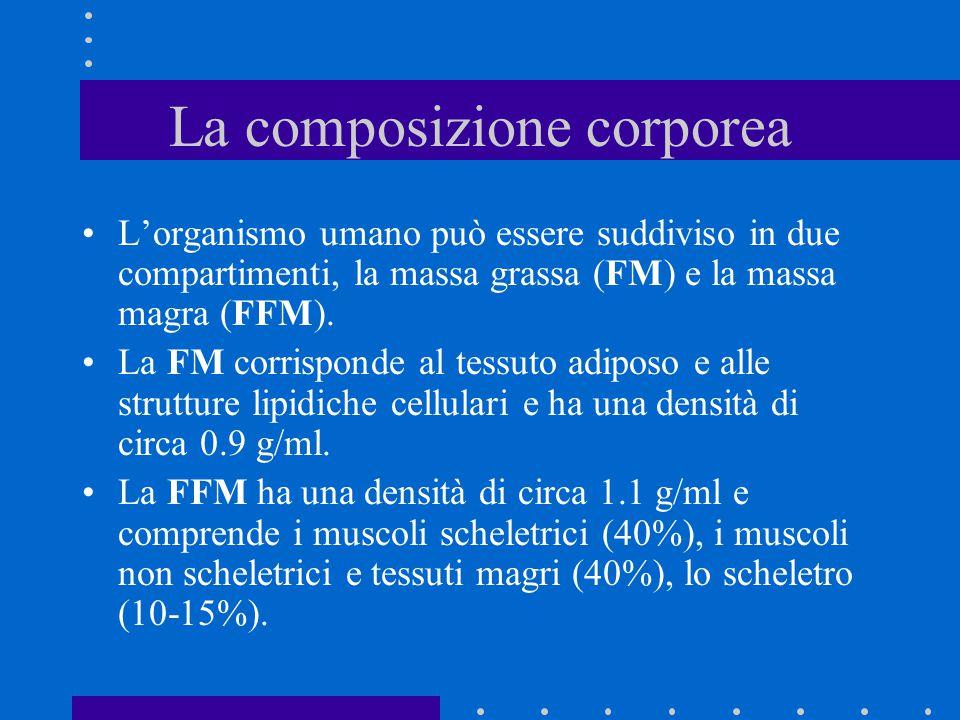 La composizione corporea L'organismo umano può essere suddiviso in due compartimenti, la massa grassa (FM) e la massa magra (FFM). La FM corrisponde a