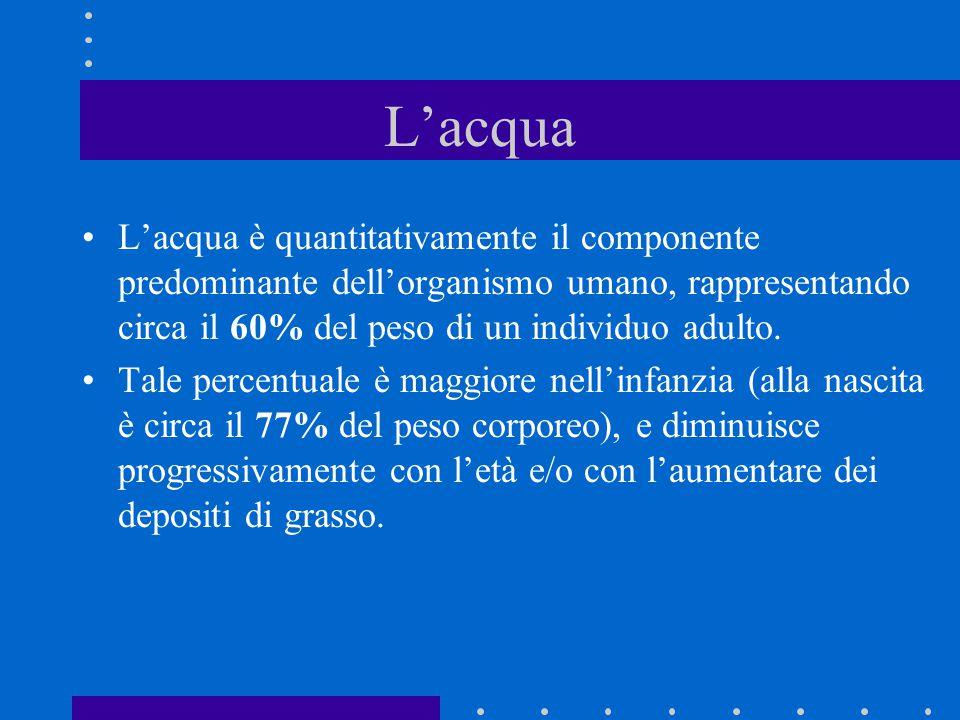 L'acqua L'acqua è quantitativamente il componente predominante dell'organismo umano, rappresentando circa il 60% del peso di un individuo adulto. Tale