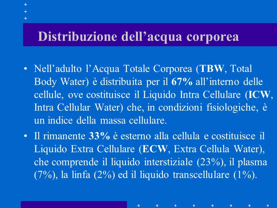 Distribuzione dell'acqua corporea Nell'adulto l'Acqua Totale Corporea (TBW, Total Body Water) è distribuita per il 67% all'interno delle cellule, ove