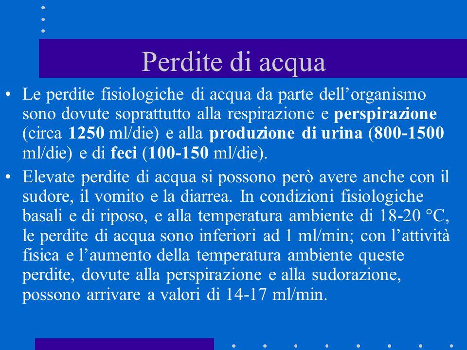 Perdite di acqua Le perdite fisiologiche di acqua da parte dell'organismo sono dovute soprattutto alla respirazione e perspirazione (circa 1250 ml/die