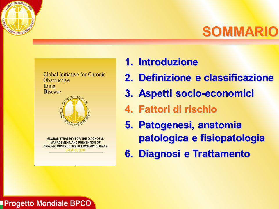 1.Introduzione 2.Definizione e classificazione 3.Aspetti socio-economici 4.Fattori di rischio 5.Patogenesi, anatomia patologica e fisiopatologia 6.Dia