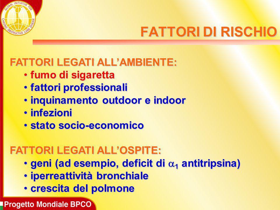 FATTORI LEGATI ALL'AMBIENTE: fumo di sigaretta fumo di sigaretta fattori professionali fattori professionali inquinamento outdoor e indoor inquinament