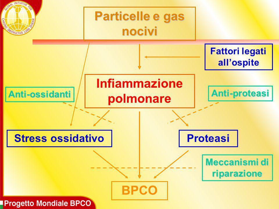 Particelle e gas nocivi Infiammazione polmonare BPCO Stress ossidativoProteasi Fattori legati all'ospite Anti-ossidanti Anti-proteasi Meccanismi di ri