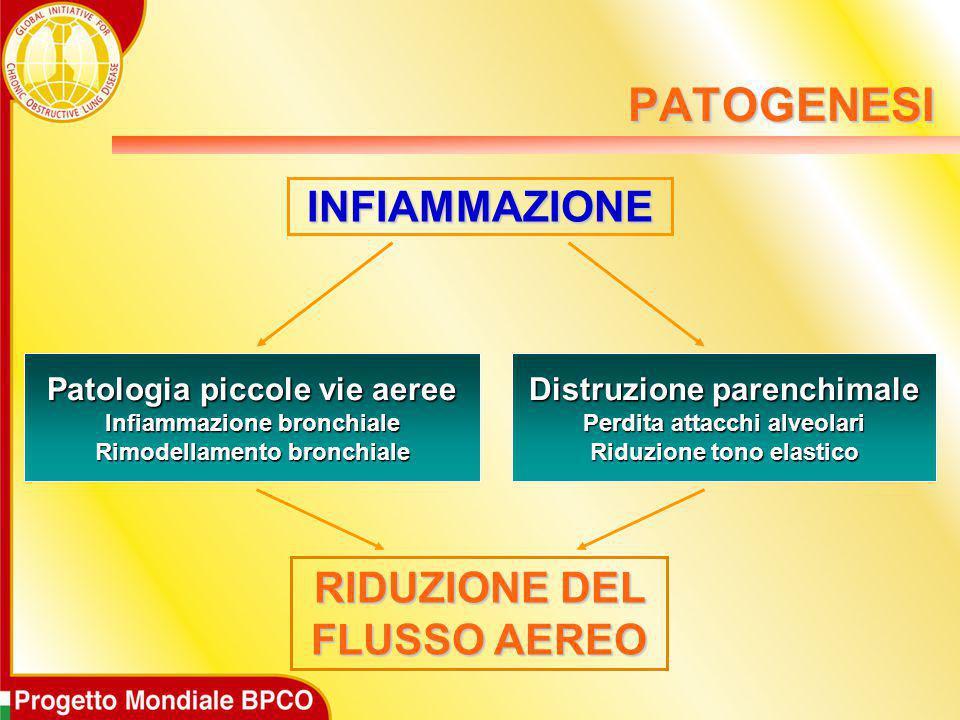 INFIAMMAZIONE RIDUZIONE DEL FLUSSO AEREO Patologia piccole vie aeree Infiammazione bronchiale Rimodellamento bronchiale Distruzione parenchimale Perdi