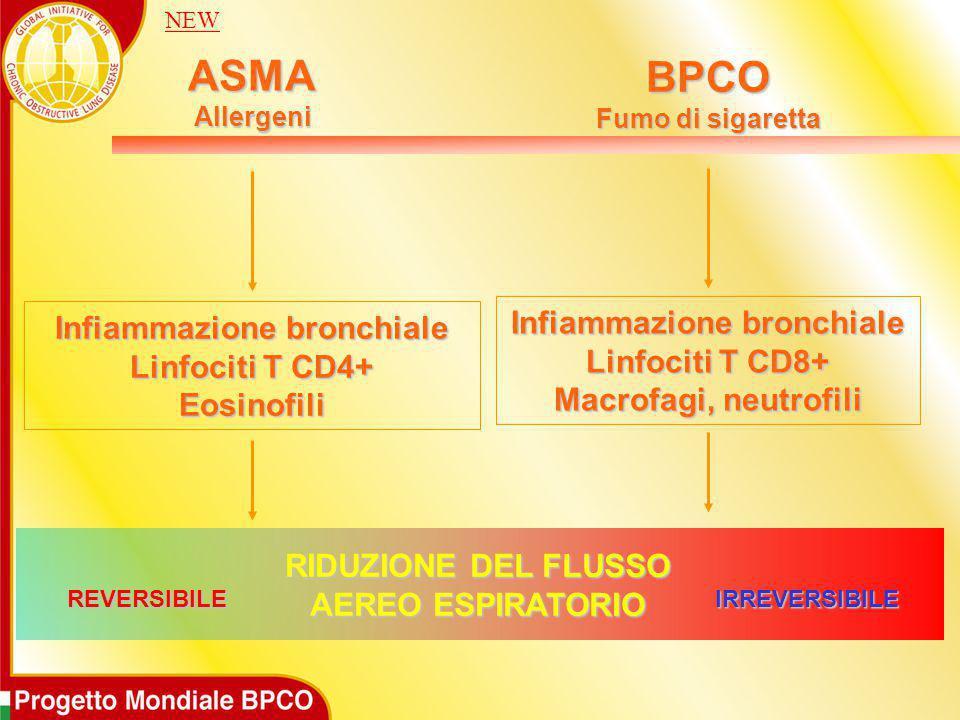 ASMAAllergeni BPCO Fumo di sigaretta Infiammazione bronchiale Linfociti T CD4+ Eosinofili Infiammazione bronchiale Linfociti T CD8+ Macrofagi, neutrof