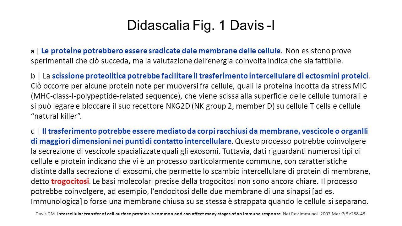 Didascalia Fig. 1 Davis -I a   Le proteine potrebbero essere sradicate dale membrane delle cellule. Non esistono prove sperimentali che ciò succeda, m