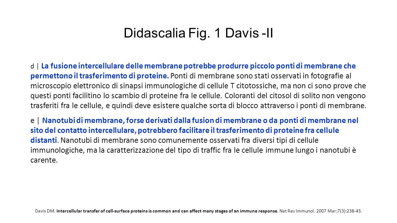 Didascalia Fig. 1 Davis -II d   La fusione intercellulare delle membrane potrebbe produrre piccolo ponti di membrane che permettono il trasferimento d