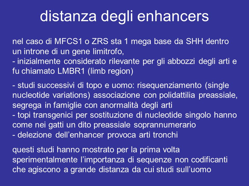 distanza degli enhancers nel caso di MFCS1 o ZRS sta 1 mega base da SHH dentro un introne di un gene limitrofo, - inizialmente considerato rilevante per gli abbozzi degli arti e fu chiamato LMBR1 (limb region) - studi successivi di topo e uomo: risequenziamento (single nucleotide variations) associazione con polidattilia preassiale, segrega in famiglie con anormalità degli arti - topi transgenici per sostituzione di nucleotide singolo hanno come nei gatti un dito preassiale soprannumerario - delezione dell'enhancer provoca arti tronchi questi studi hanno mostrato per la prima volta sperimentalmente l'importanza di sequenze non codificanti che agiscono a grande distanza da cui studi sull'uomo