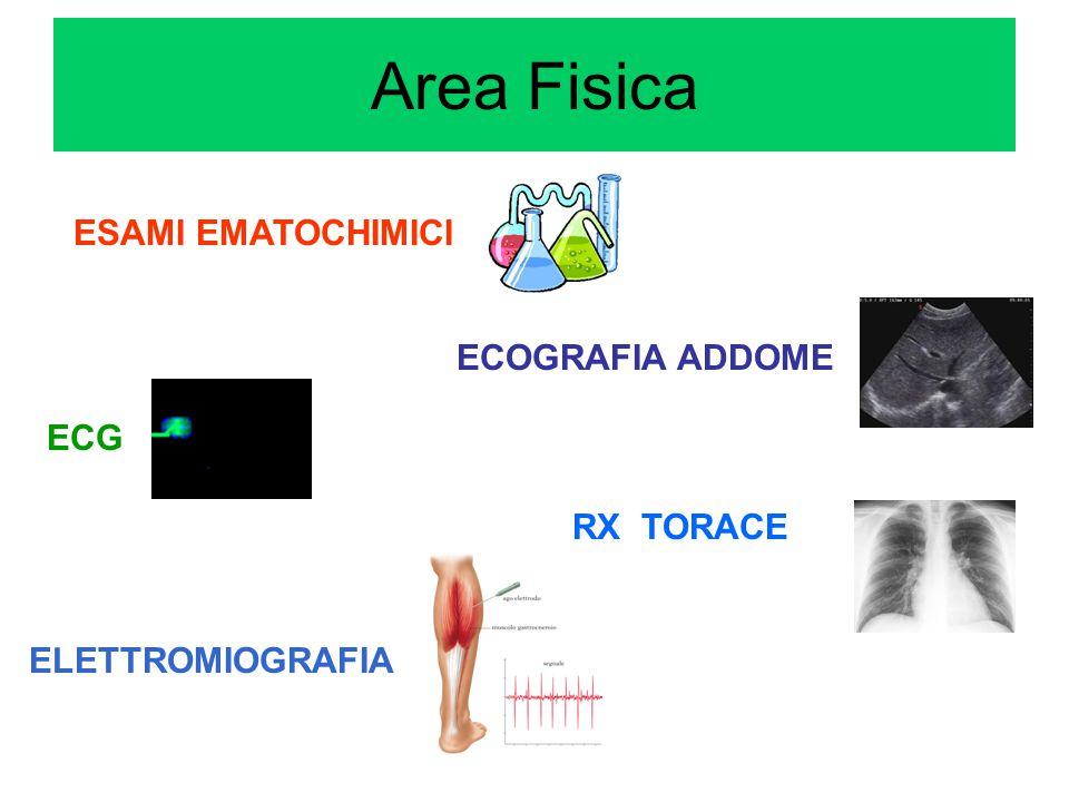 ECOGRAFIA ADDOME RX TORACE ELETTROMIOGRAFIA ECG ESAMI EMATOCHIMICI Area Fisica