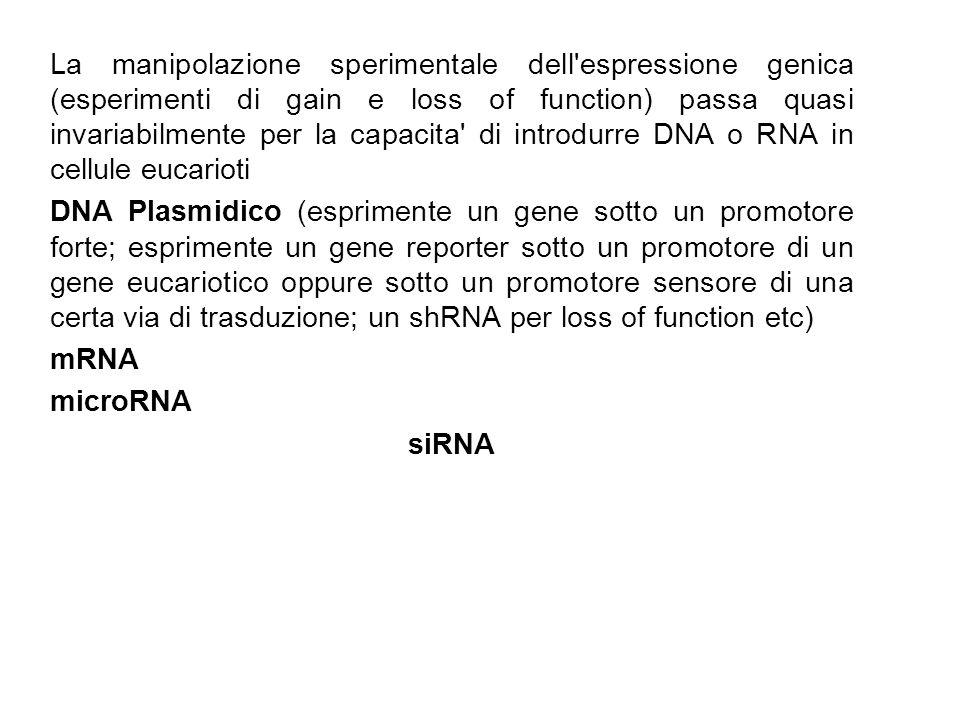 La manipolazione sperimentale dell'espressione genica (esperimenti di gain e loss of function) passa quasi invariabilmente per la capacita' di introdu