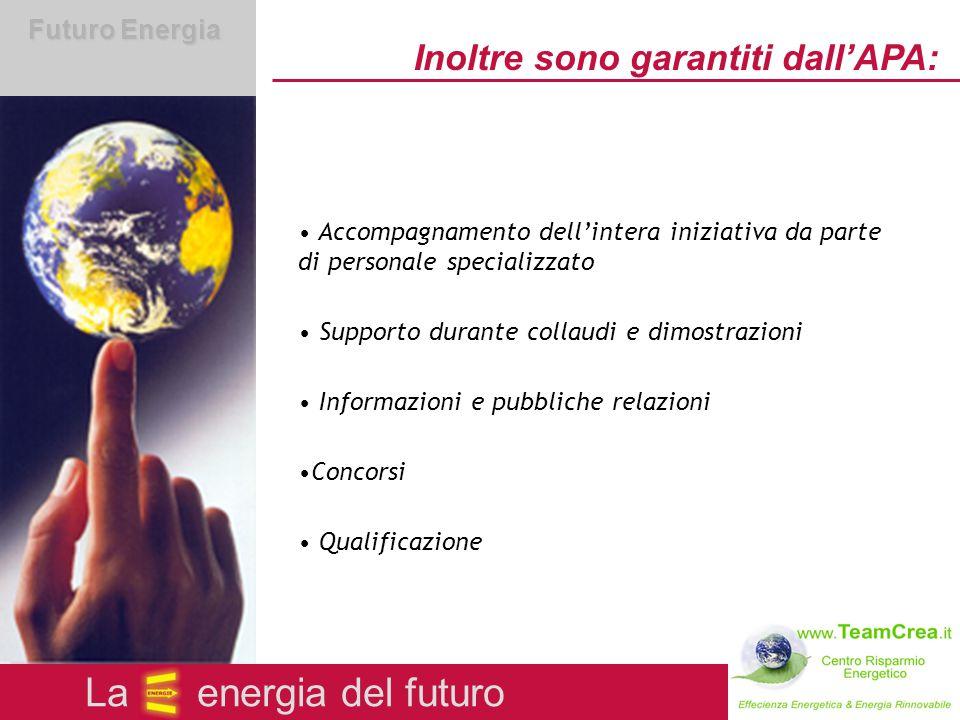 Futuro Energia Obiettivi dell'offensiva dell'APA Utilizzo moderato delle risorse naturali Processi economici ed occupazionali positivi Maggiore specializzazione delle imprese artigiane La energia del futuro