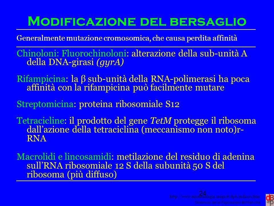 http://www.microbiologia.unige.it/dpb/indexxx.htm Dinamica delle Popolazioni Batteriche Modificazione del bersaglio Generalmente mutazione cromosomica
