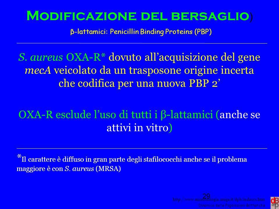 http://www.microbiologia.unige.it/dpb/indexxx.htm Dinamica delle Popolazioni Batteriche Modificazione del bersaglio ) β-lattamici: Penicillin Binding