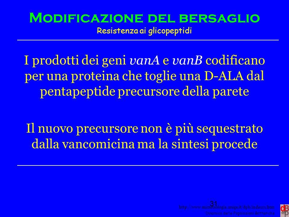 http://www.microbiologia.unige.it/dpb/indexxx.htm Dinamica delle Popolazioni Batteriche Modificazione del bersaglio Resistenza ai glicopeptidi I prodo