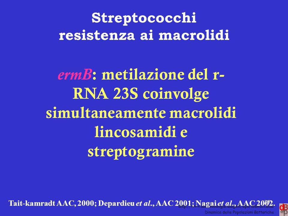 http://www.microbiologia.unige.it/dpb/indexxx.htm Dinamica delle Popolazioni Batteriche Streptococchi resistenza ai macrolidi ermB : metilazione del r