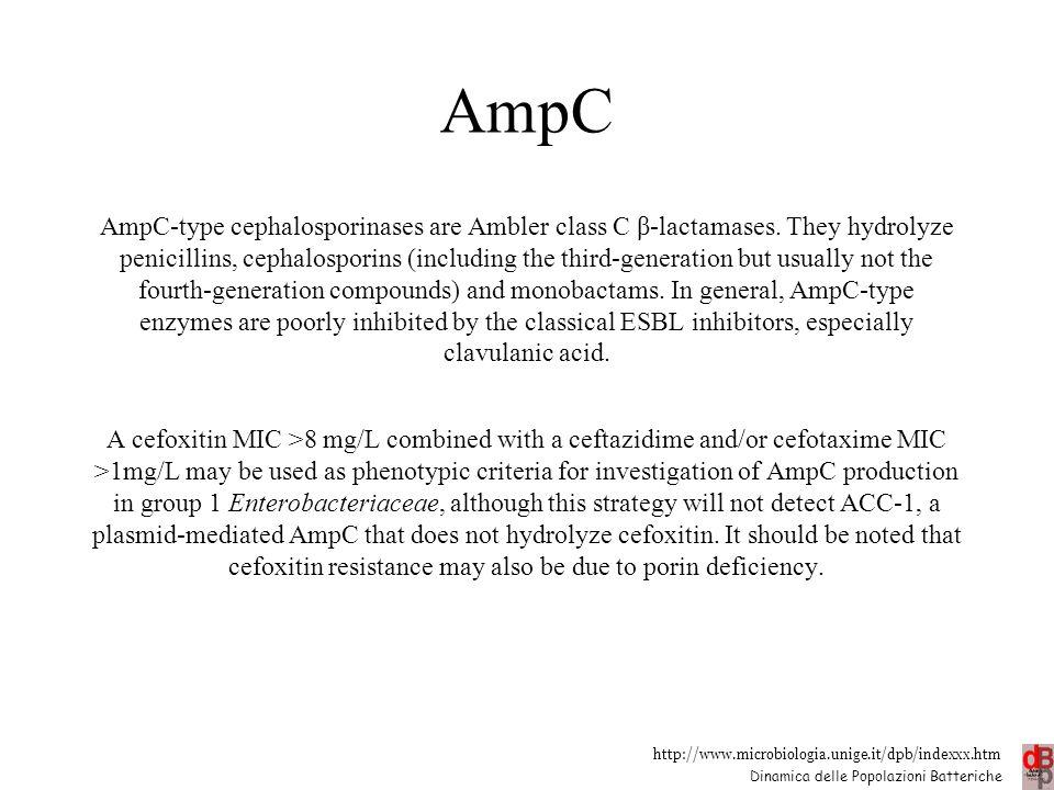 http://www.microbiologia.unige.it/dpb/indexxx.htm Dinamica delle Popolazioni Batteriche AmpC AmpC-type cephalosporinases are Ambler class C β-lactamas