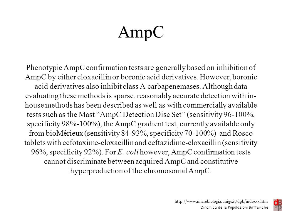 http://www.microbiologia.unige.it/dpb/indexxx.htm Dinamica delle Popolazioni Batteriche AmpC Phenotypic AmpC confirmation tests are generally based on