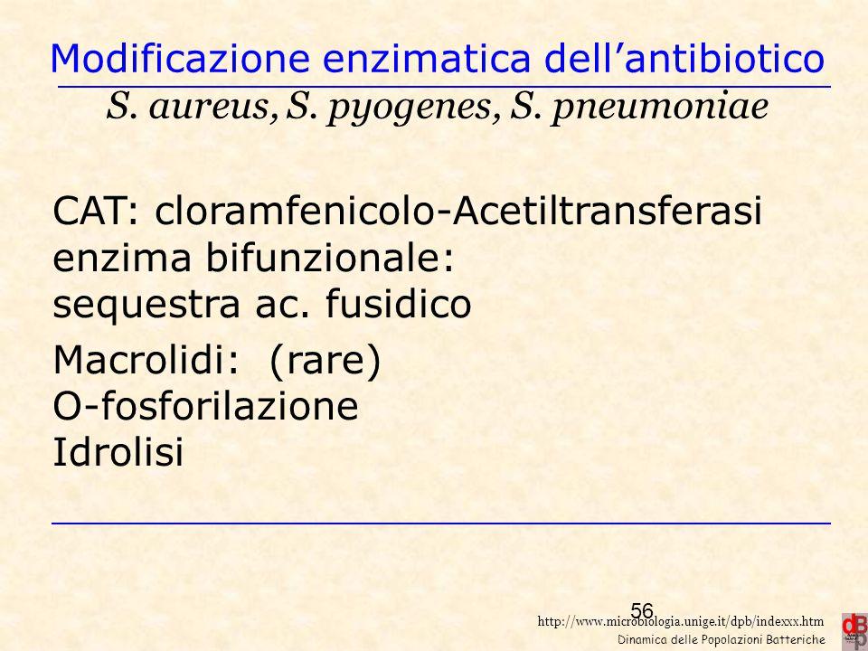 http://www.microbiologia.unige.it/dpb/indexxx.htm Dinamica delle Popolazioni Batteriche Modificazione enzimatica dell'antibiotico S. aureus, S. pyogen