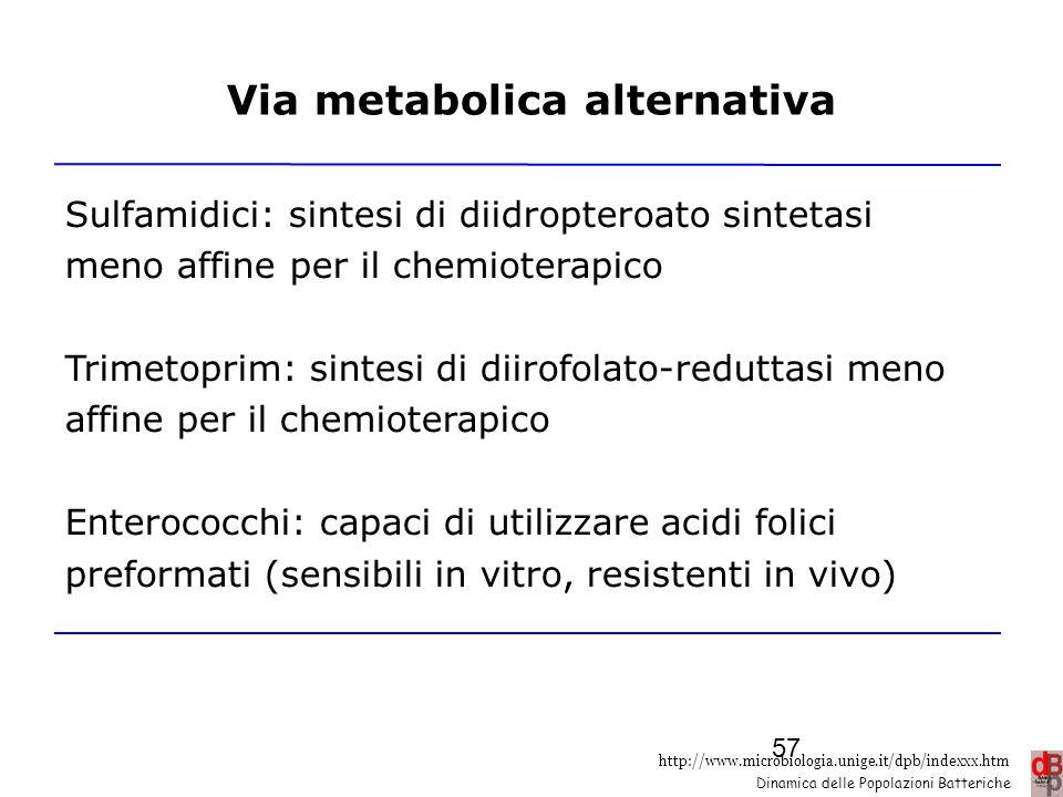 http://www.microbiologia.unige.it/dpb/indexxx.htm Dinamica delle Popolazioni Batteriche Via metabolica alternativa Sulfamidici: sintesi di diidroptero