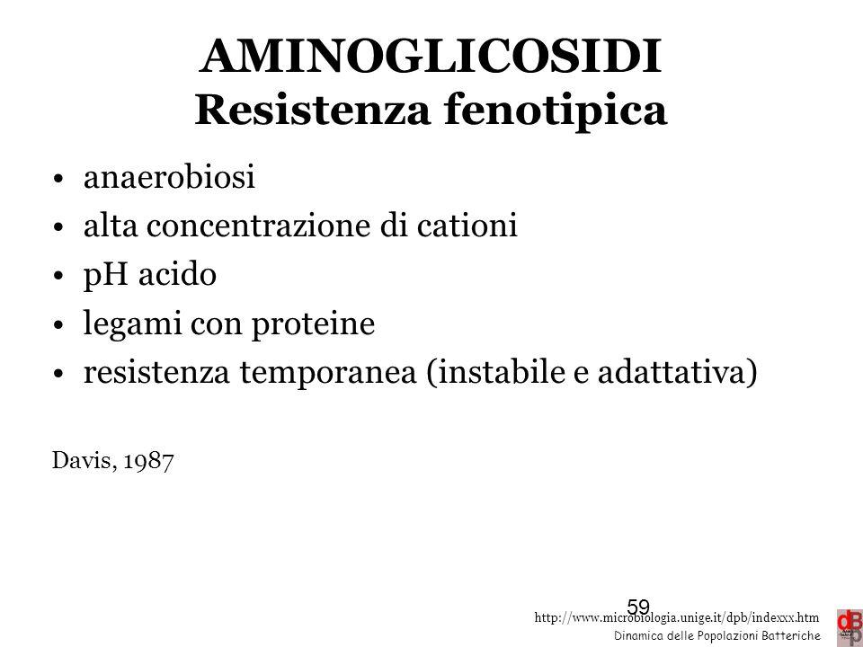 http://www.microbiologia.unige.it/dpb/indexxx.htm Dinamica delle Popolazioni Batteriche AMINOGLICOSIDI Resistenza fenotipica anaerobiosi alta concentr